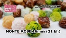 MONTE ROSE 16mm (21 bh)