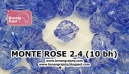 MONTE ROSE 24mm (10 bh)